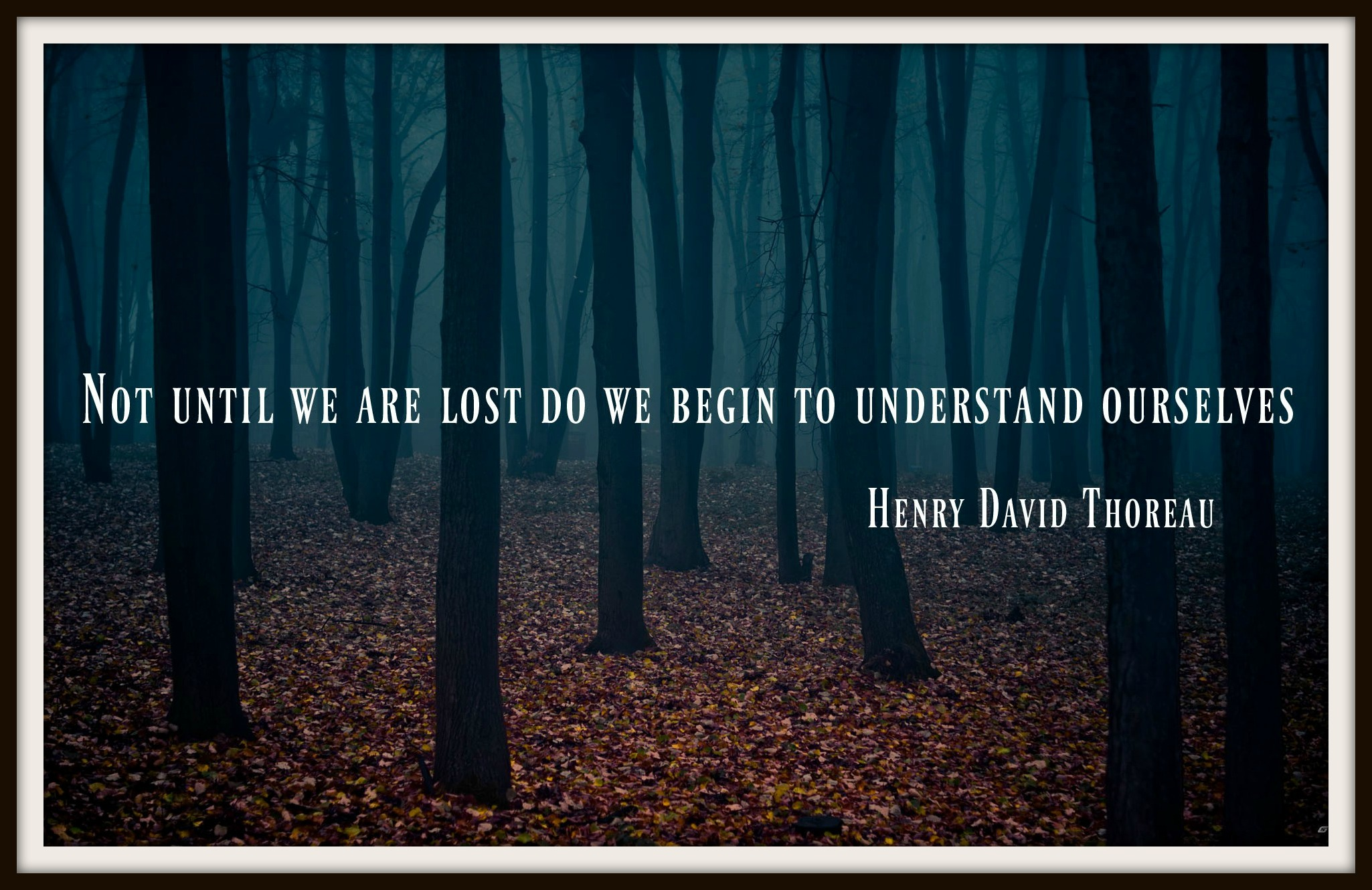 Thoreau Quote